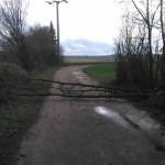 Einsatz Gruppe 3 (Baum über Straße)